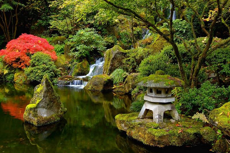 Японский сад книга скачать
