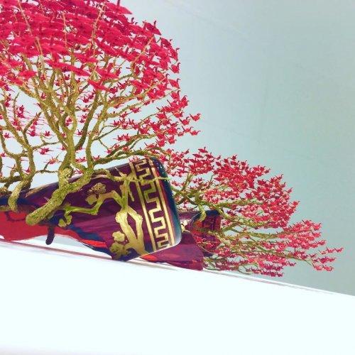 Невероятные деревья-бонсай с кронами из тысяч крошечных оригами журавлей (15 фото)