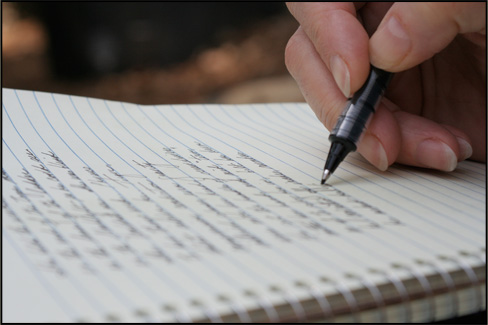 Сотрудник в единственном числе заявление на отпуск должен писать