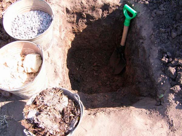подготовка ямы под виноград