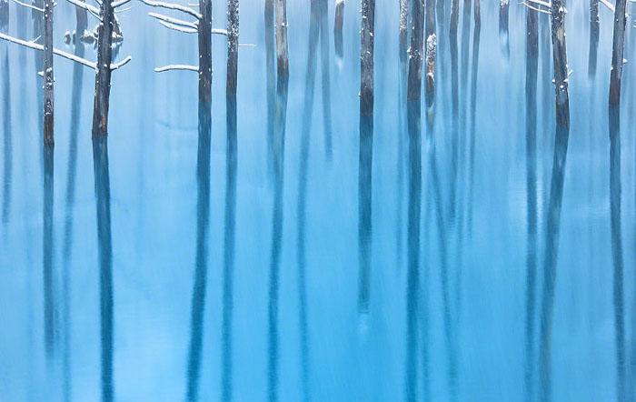 Голубые воды пруда.