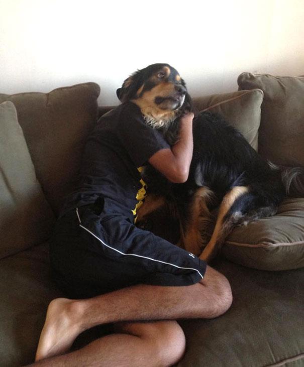 25 удачных кадров с собаками