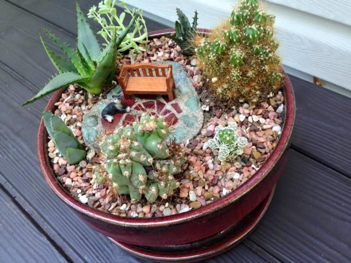 Колючие кактусы гармонично сочетаются с мелкими камешками и толстыми стеблями алоэ.