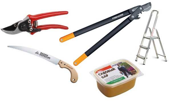 инструменты для обрезки дерева