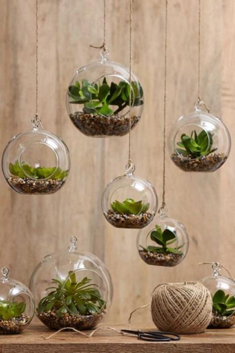 Креативный способ украшения малогабаритной квартиры с помощью стеклянных шариков, в которых посажены небольшие растения.