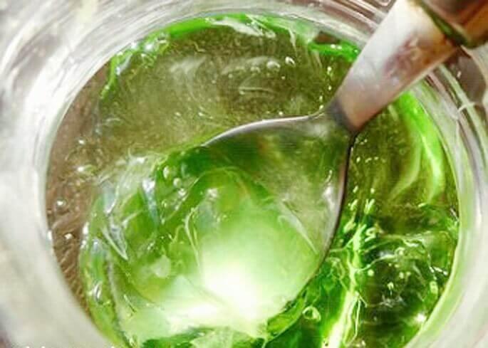 Сок растения можно заготовить в домашних условиях