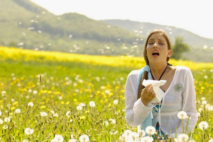 Аллергия может настигнуть внезапно. /Фото: ckfbih.ba