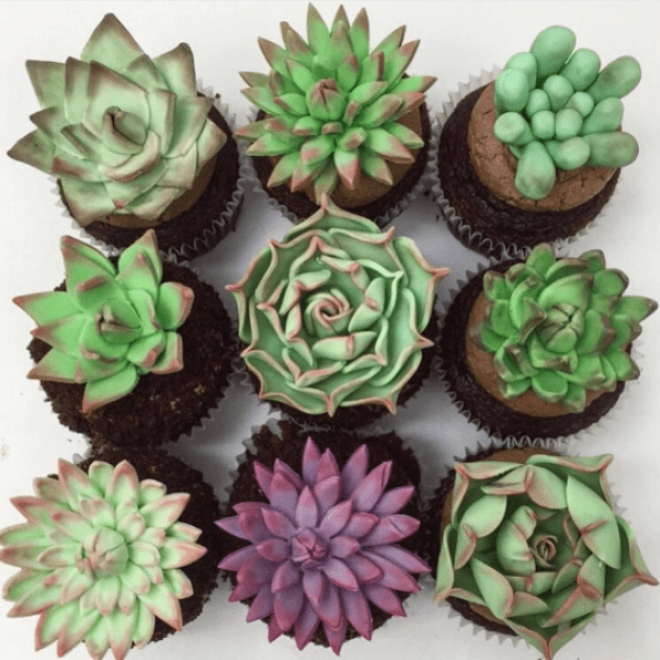 Succulents belong in ceramic pots, not cupcake liners.