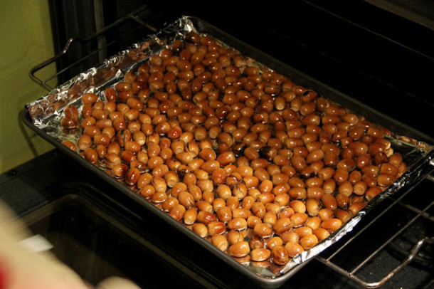 acorns5a