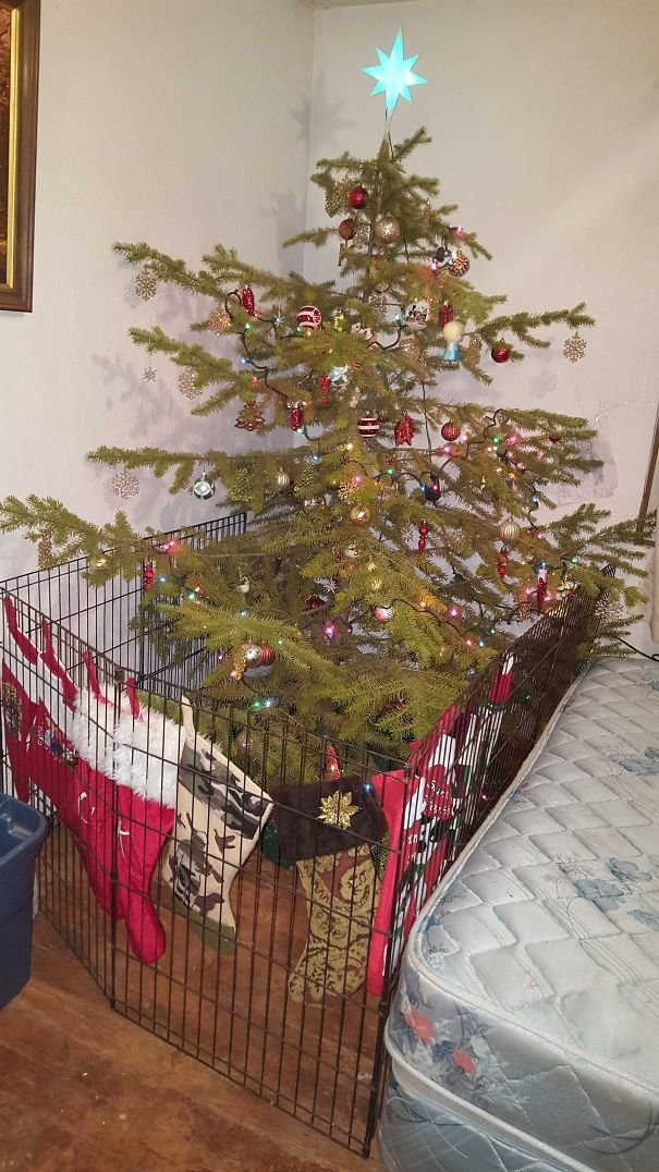 Ограждение елки от детей 7
