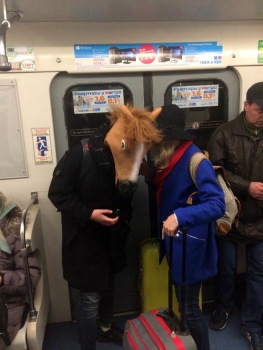 Прекрасный конь.