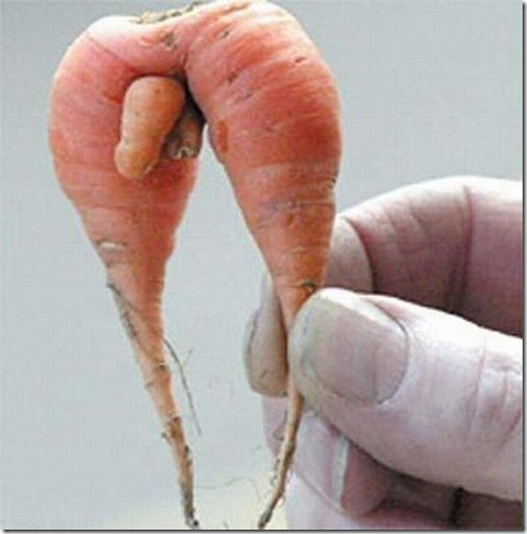 unusual-fruit-and-vegetables04
