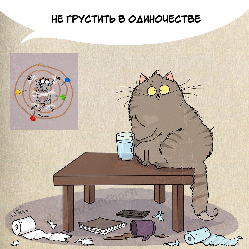 замечательный что значит выражение у кошки 9 жизней возрасте