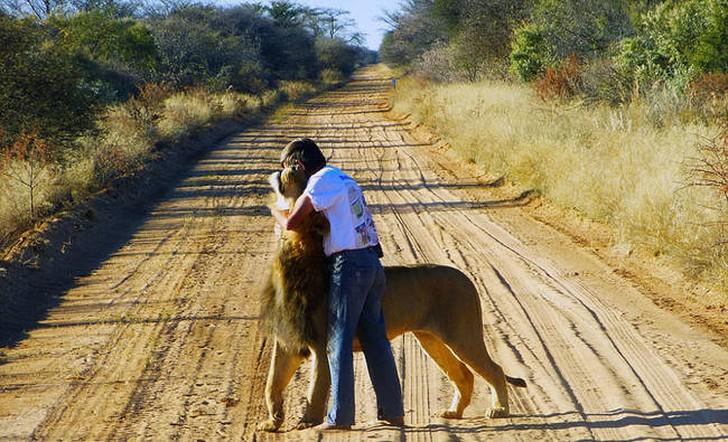 Zion10 Трогательная история об удивительной дружбе