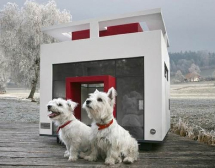 the-cubix-dog-house