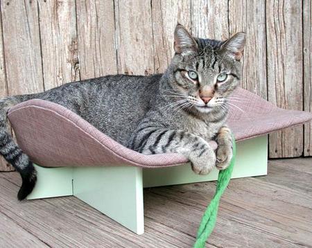Спальня для любимой кошки: 10 милых идей фото 5