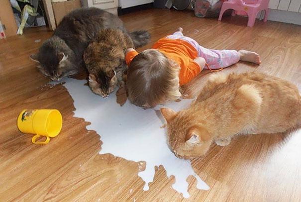 питомцы с детьми, домашние животные наедине с детьми