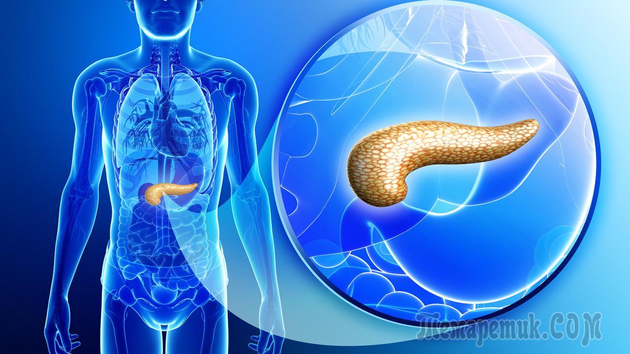 Химиотерапия рака поджелудочной железы