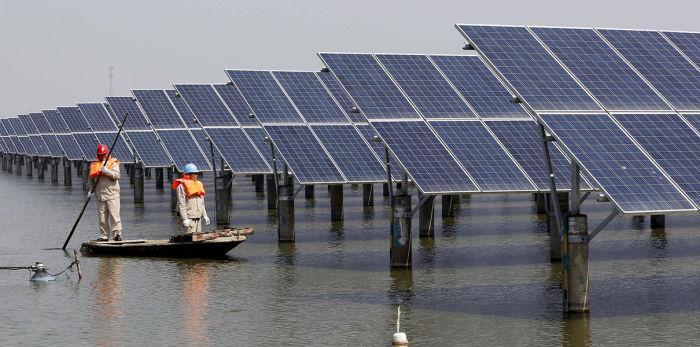 Удивительное явление для пользы планеты. /Фото: hightech.fm