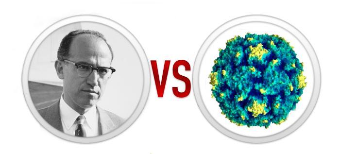 5. Паралич или вакцина: Джонас Солк против полиомиелита