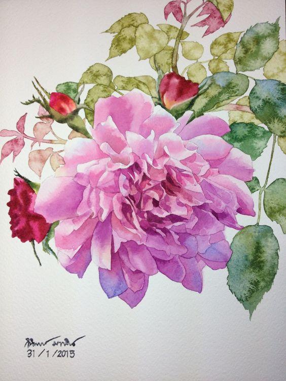 Rose Watercolor painting: