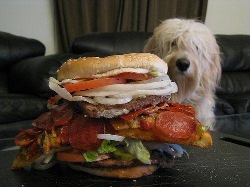 Бутерброд, еда