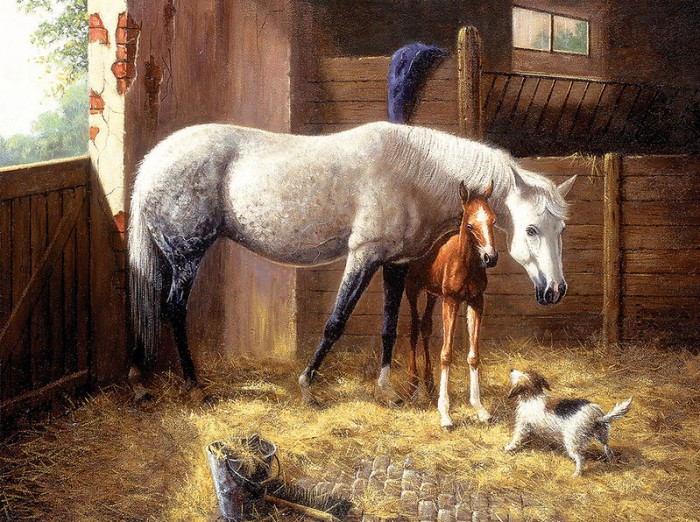 лошади художник Bonnie Marris - 12