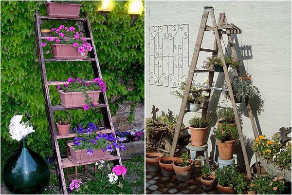 Полки из лестницы пригодны для озеленения