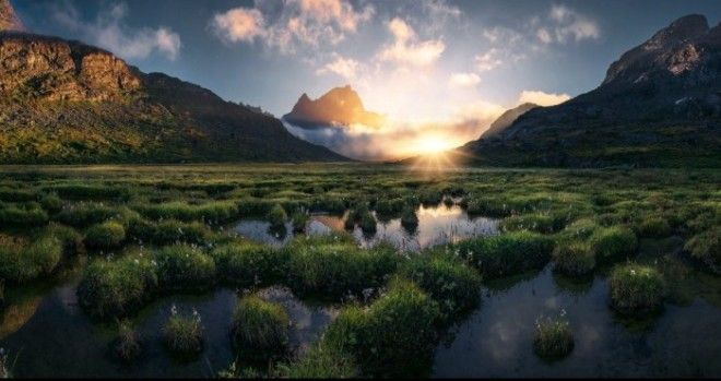 Зелёная земля. Автор: Max Rive.
