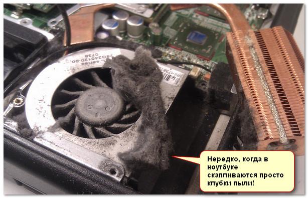 Нередко, когда в ноутбуке скапливаются просто клубки пыли!