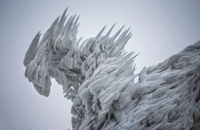 30 фото про те, що зима творить дива крутіші за фотошоп - фото 9