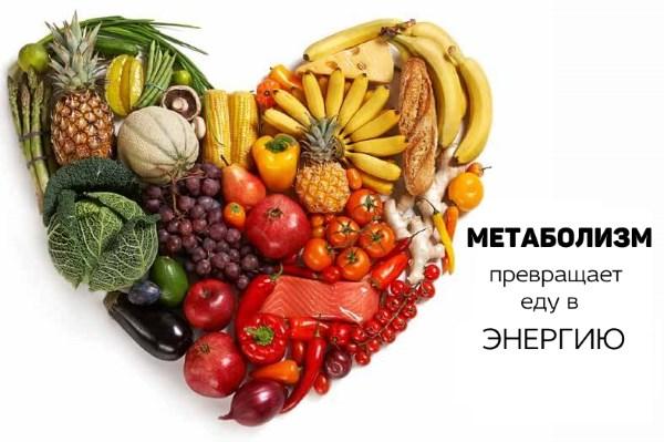Что такое метаболизм и как его ускорить?