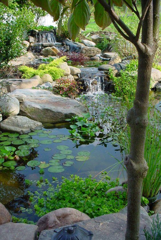 NewPix.ru - Сады с водоемом, фонтаном и водопадом