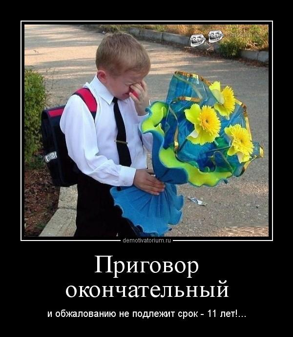 Ком - Прикольные картинки - Смешные истории