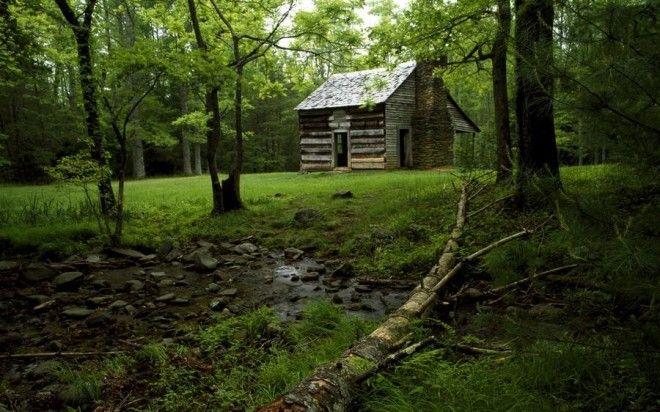 houseinwood11 Самые красивые дома в лесу