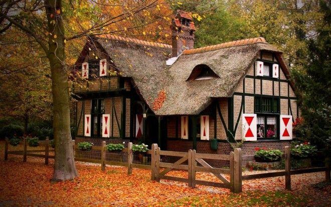houseinwood08 Самые красивые дома в лесу