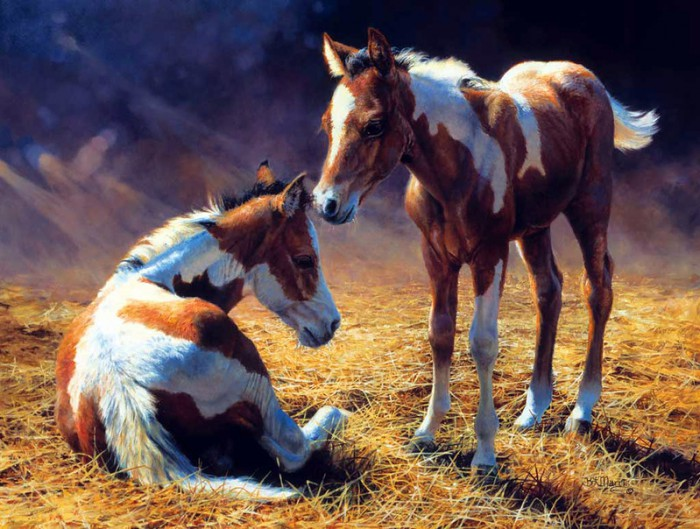 лошади художник Bonnie Marris - 08
