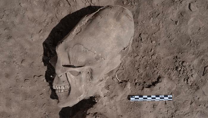 Деформация ради красоты: черепа Сонора. / Фото: listverse.com