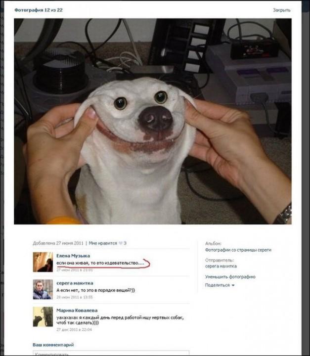 Смешные комментарии из социальных сетей 12.05.14 комментарии, соцсети, прикол
