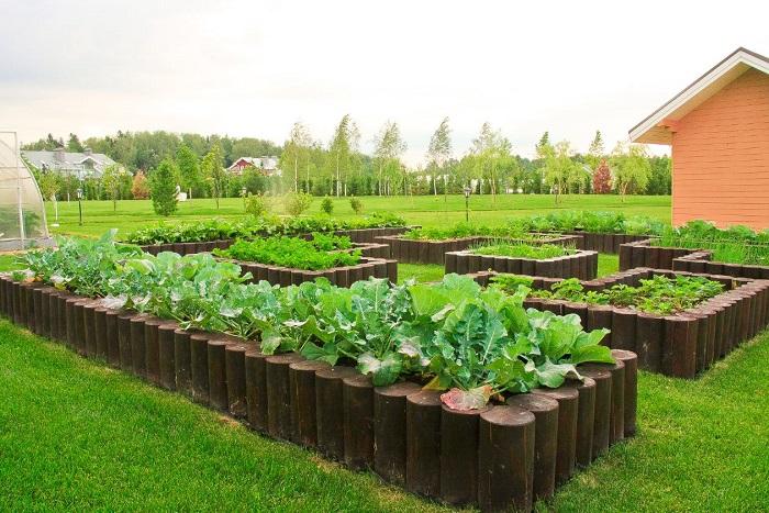 Деревянные столбики можно использовать для создания ограждения для грядок, клумб и цветников.
