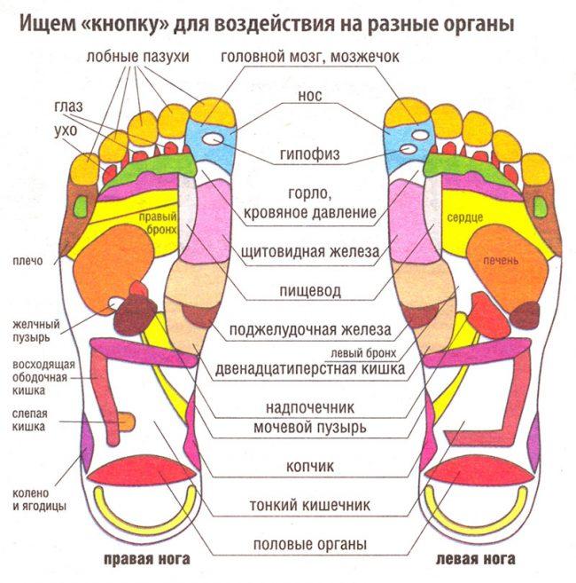 Могут ли болеть копчик ноги ягодицы при геморрое