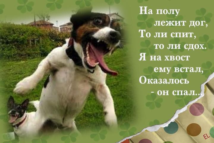 стихи классные короткие информация ростовский государственный