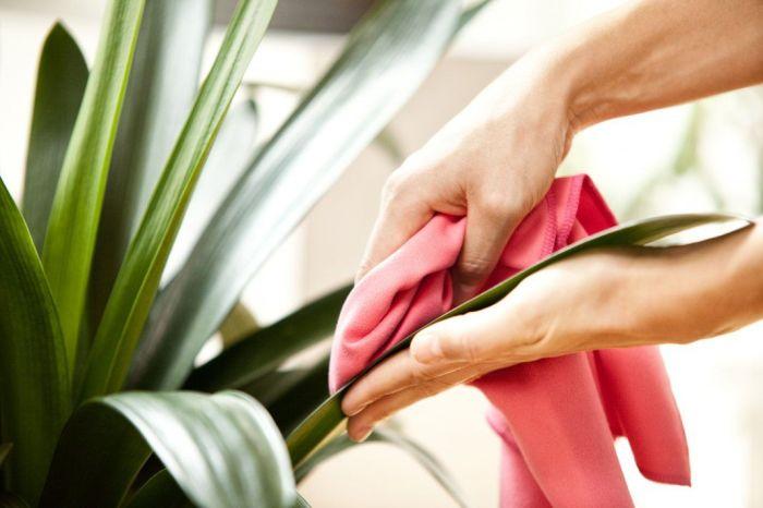 Важное правило для экономии времени — делать все дела сразу, а не ждать до генеральной уборки. /Фото: i.pinimg.com