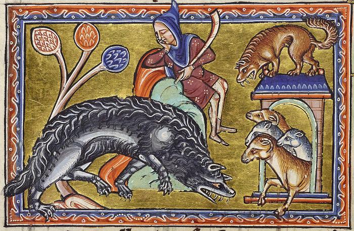 Волки были постоянной опасностью для средневековых крестьян и путников.
