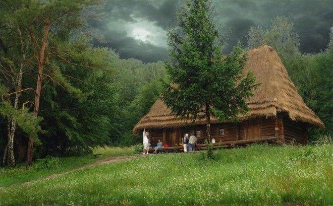 houseinwood07 Самые красивые дома в лесу