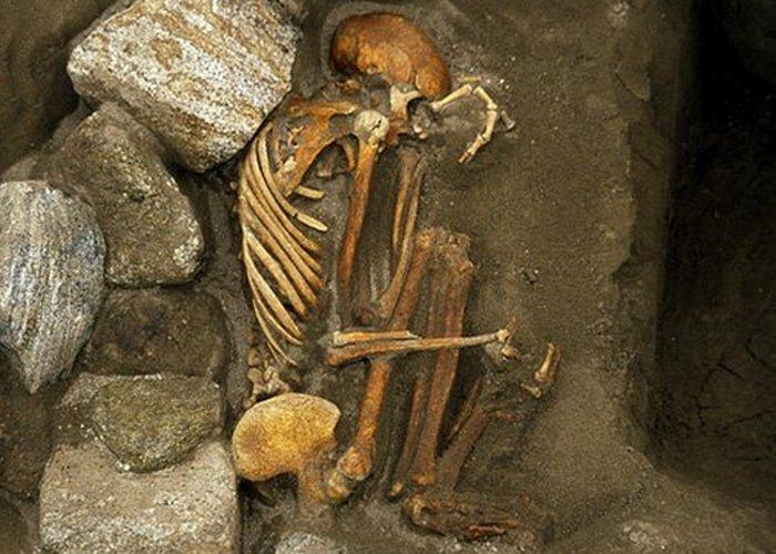 Конструктор из костей.