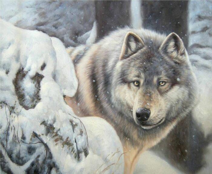 Волк, перебежавший дорогу, сулил удачу в охоте. /Фото: i.pinimg.com