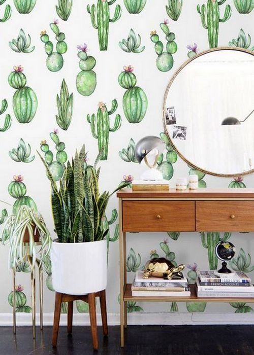 Для самых отчаянных поклонников кактусов.