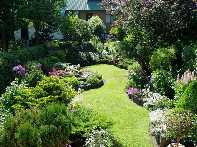 Правила размещения кустарников в саду