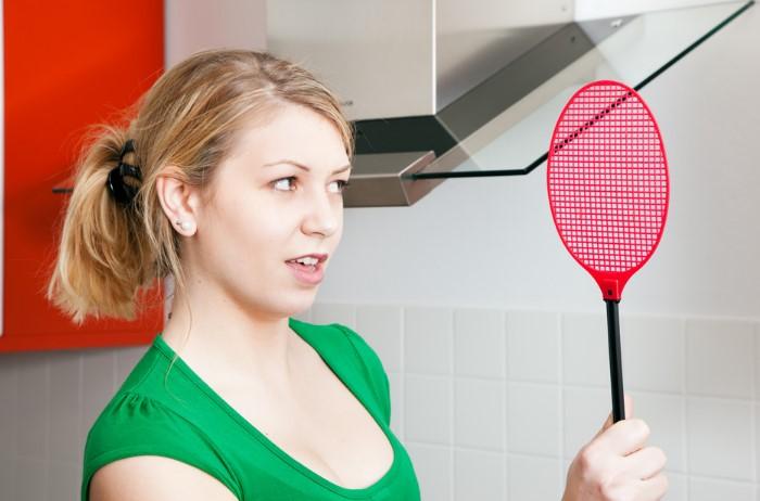 Не спешите паниковать при виде мошек и пользоваться агрессивными аэрозолями / Фото: millerpestcontrol.com